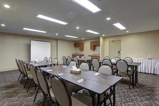 Comfort Inn and Suites Ambassador Bridge: Meeting room