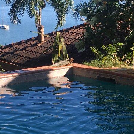 Seagull Cove Resort張圖片