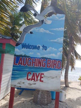 Laughing Bird Caye National Park : 20180131_111958_large.jpg