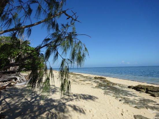 Green Island, Australia: Walking around the island.