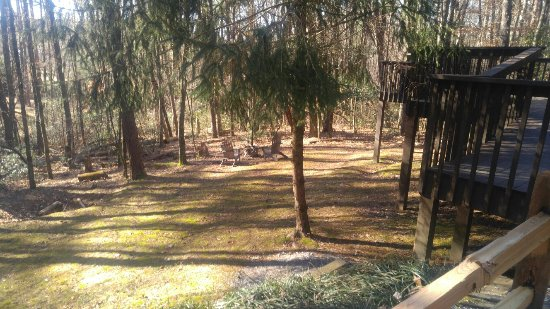 Tanglewood Cabins: 20180121_110524_large.jpg