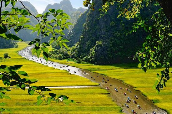 Full-day Hoa Lu and Tam Coc tour with...