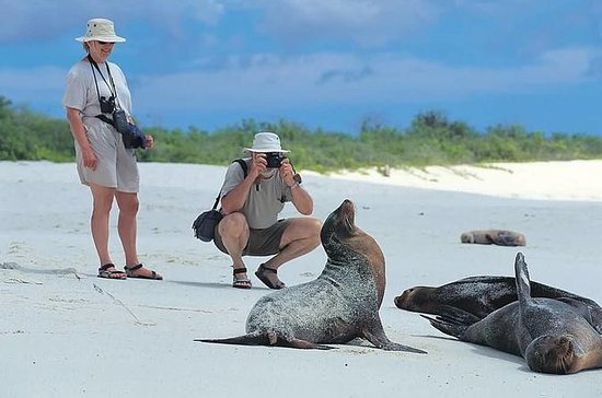 5-Day Galapagos Tour: Santa Cruz and...