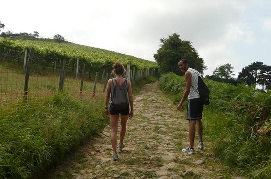 Camino de Santiago trail Private...
