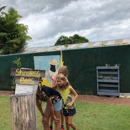 Urunga, Australia: photo2.jpg
