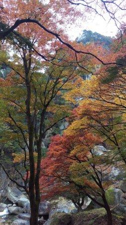 Shosen Valley: 昇仙峡の遊歩道から撮った紅葉