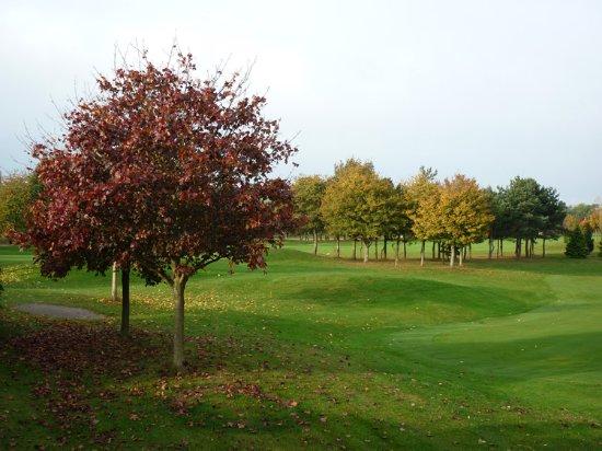Landscape - Picture of The View, Welwyn Garden City - Tripadvisor