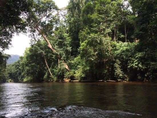 Taman Negara National Park: Sungai Tahan