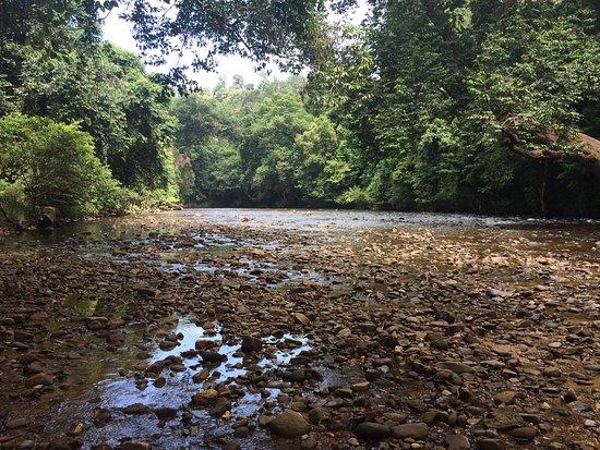 Taman Negara National Park: Sungai Taman near Late Berkoh
