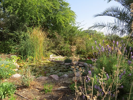 Botanical Garden Of Eilat