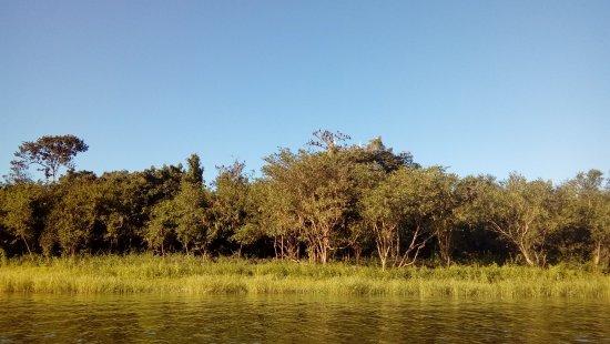 Pucallpa Amazon Tours: Laguna Yarinacocha