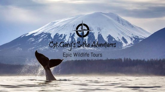 Sitka, AK: Epic Wildlife Tours ... it's what we do