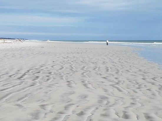 Little Talbot Island State Park: 20180202_104343_large.jpg