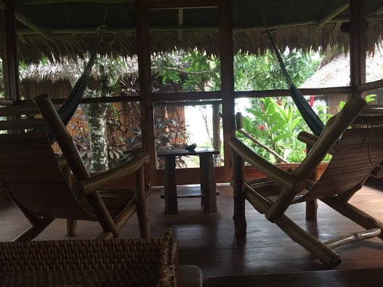 Inkaterra Reserva Amazonica: View from bungalo. You also have hammocks
