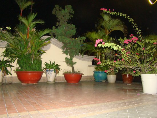 Spring Hotel: Roof terrace