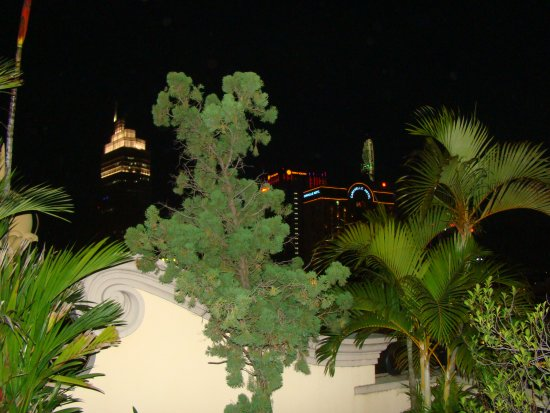 Spring Hotel: View from the Roof terrace