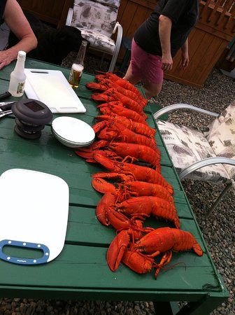 Big Bras d'Or, Canada: cottagers having a feed during lobster season