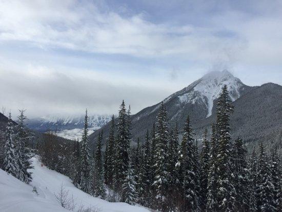 Golden, Canada: Views