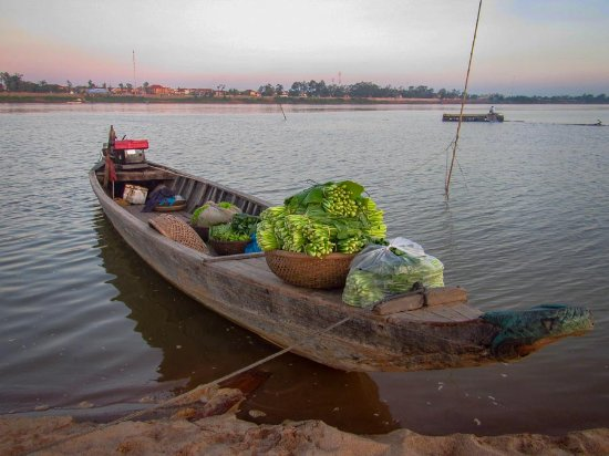 Cambodian Pride Tours - Day Tours: vegetables packed to bring to market the next day.