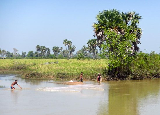 Cambodian Pride Tours - Day Tours: locals fishing for snakehead fish with throw nets.