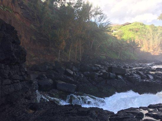 Hike Kauai With Me : Fabulous morning hiking with Tom