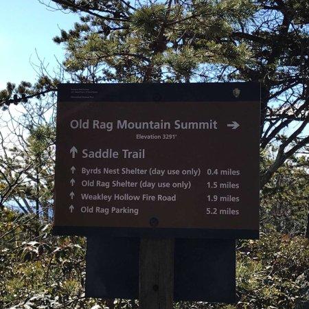 Old Rag Mountain Hike: photo2.jpg