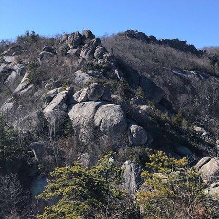 Old Rag Mountain Hike: photo3.jpg