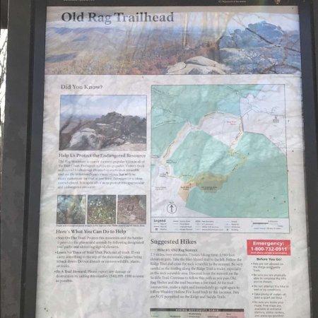 Old Rag Mountain Hike: photo4.jpg