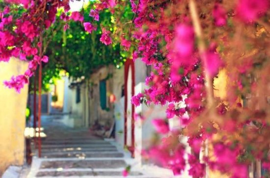 Corfu's Hidden Secrets Walking Tour...