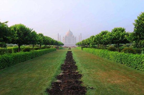 Desde Delhi: 2 días de excursión...