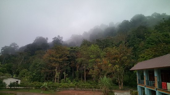 Khaosok Rainforest Resort: 20180202_064747_001_large.jpg