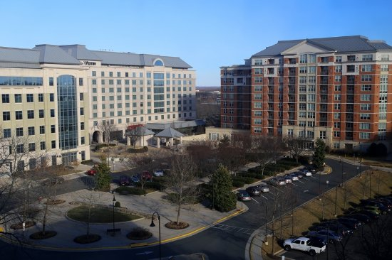 Sheraton Reston Hotel 85 ̶1̶3̶3̶ Updated 2018 Prices