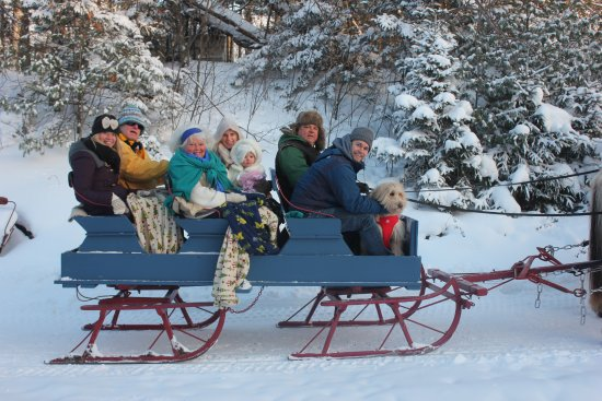 Ishpeming, MI: Our bobsled with pups, people and ponies.