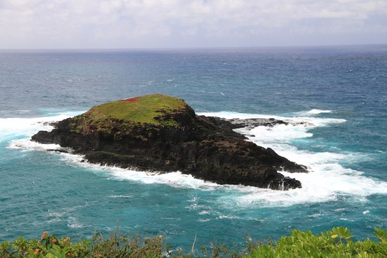 View from Kilauea Lighthouse