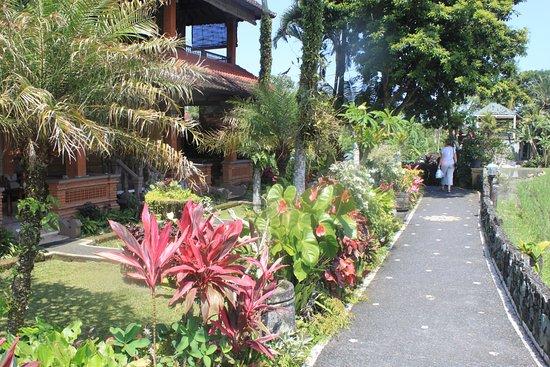 Cendana Resort And Spa Tripadvisor