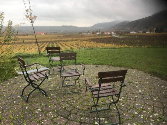 Leinsweiler, Jerman: Blick über die Weinberge vom Garten aus