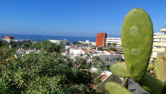 Hovima santa maria hotel tenerife costa adeje prezzi - Restaurante noto marbella ...