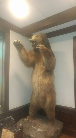 The Cheshire: ...He was a Kodiak-looking fellow, About 19 feet tall... :)