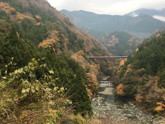 Miyoshi, Japan: 地元の人ぞ知る、ローカルフォトストップ♪