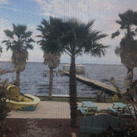 Crescent City, FL: photo7.jpg