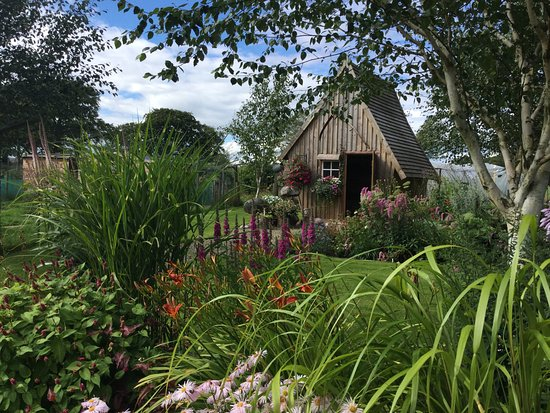 Beeches Cottage Nursery