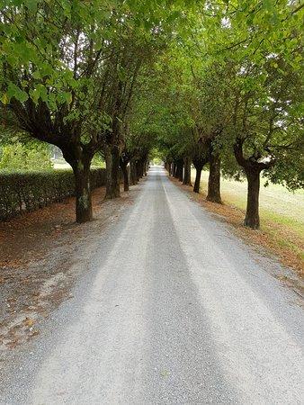 Villa di Piazzano: 20170915_134636_large.jpg