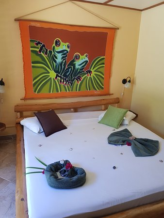 Samara Palm Lodge Picture