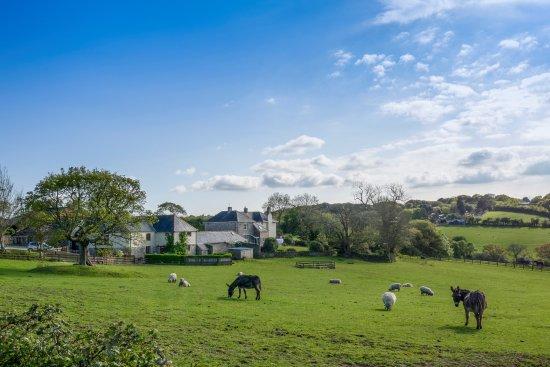 Tregongeeves Farm Cottages: Tregongeeves Farm