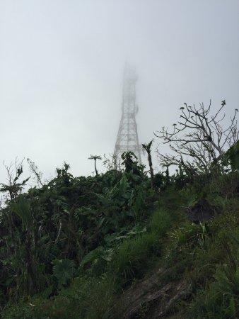 Mount Scenery: de radiotoren in de mist
