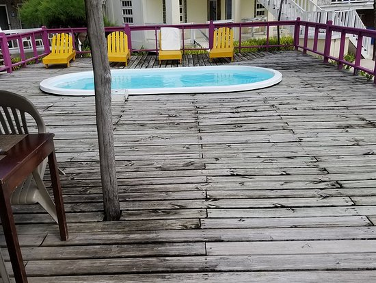 Exotic Caye Beach Resort: Pool area...Watch your step...and no diving!