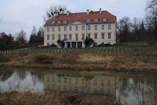 Rattey, Allemagne : Rückseite des Hotel, mit Weinberg und See