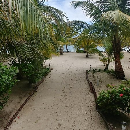 Miller's Landing Resort: IMG_20180128_105227_727_large.jpg