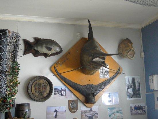 Hentiesbaai, Namíbia: Interno 3