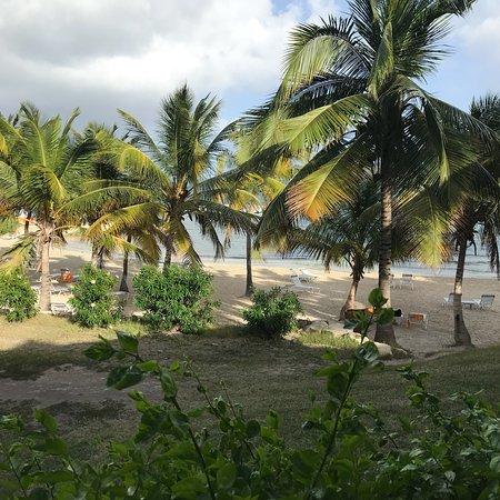 Freetown, Antigua: photo9.jpg